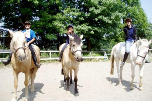 桜川緑地体験乗馬会2020〈閉幕しました〉